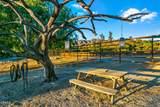 6770 Wheeler Canyon Road - Photo 70