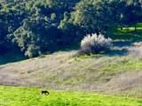6770 Wheeler Canyon Road - Photo 10