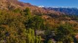 801 Del Oro Drive - Photo 45