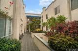 151 Maple Street - Photo 1