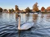 2546 Oakshore Drive - Photo 37