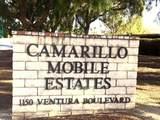 1150 Ventura Blvd Boulevard - Photo 1