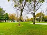 1055 Corte Descanso - Photo 12