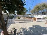 7733 Cleon Avenue - Photo 14