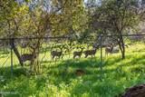 3620 River Farm Drive - Photo 32