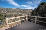 3630 Main Trail - Photo 34
