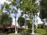 24066 Calendula - Photo 45