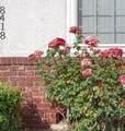 8416 Glencrest Drive - Photo 11
