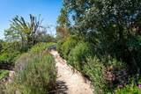 2925 Lindaloa Lane - Photo 63