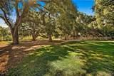 26470 Macmillan Ranch Road - Photo 6