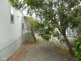217 Calle De La Rosa - Photo 23