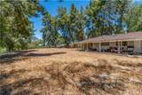 24172 Lupin Hill Road - Photo 3