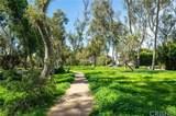 2517 Palos Verdes Drive - Photo 39