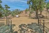 17724 Pigeon Springs Road - Photo 41