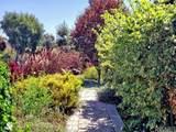 6175 Paseo Canyon Drive - Photo 4