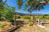 43695 Trail - Photo 21