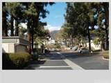 763 Sequoia Lane - Photo 8