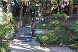 8650 Gulana Avenue - Photo 1