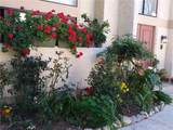 26396 Plata Lane - Photo 2
