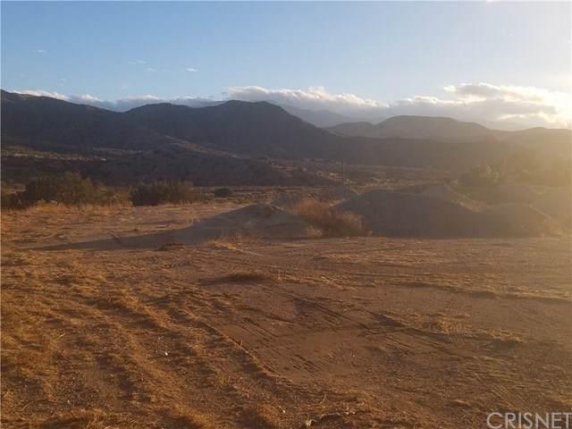 0 Vac/Soledad Canyon Rd/Vic Cars, Acton, CA 93510 (#SR17253496) :: Randy Plaice and Associates