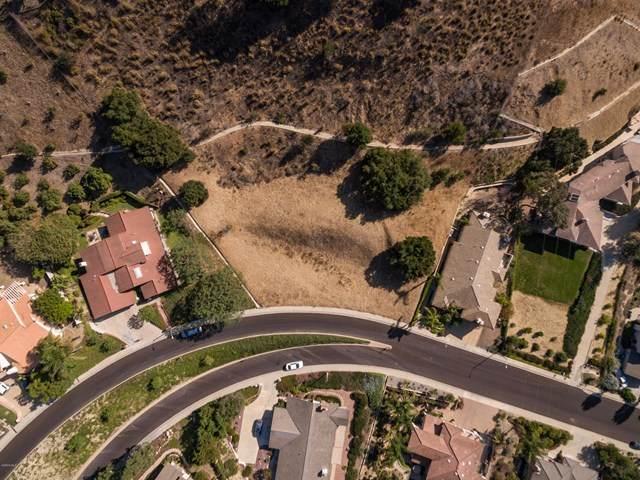 Bridgeview Road, Ventura, CA 93003 (#218010958) :: Randy Plaice and Associates
