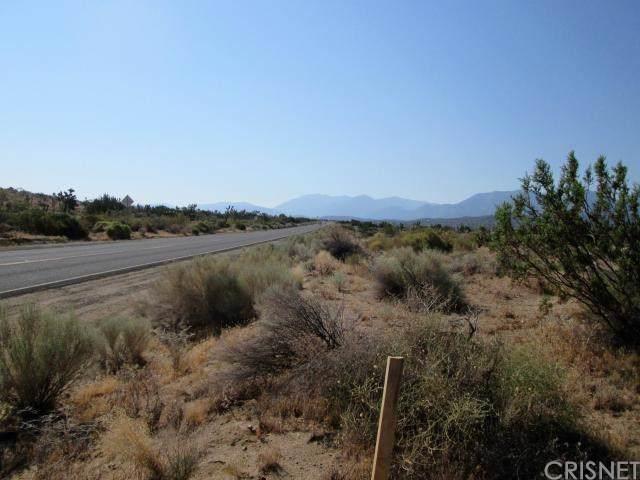 0 Fort Tejon Nr  Butterfield Stage Rd, Juniper Hills, CA 93553 (#SR18287695) :: Randy Plaice and Associates