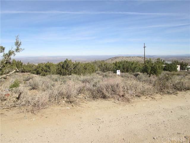 0 Linda Mesa Rd Nr 106th St E, Juniper Hills, CA 93543 (#SR19011288) :: Randy Plaice and Associates