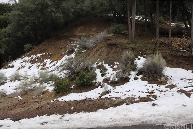14004 Yellowstone Drive - Photo 1