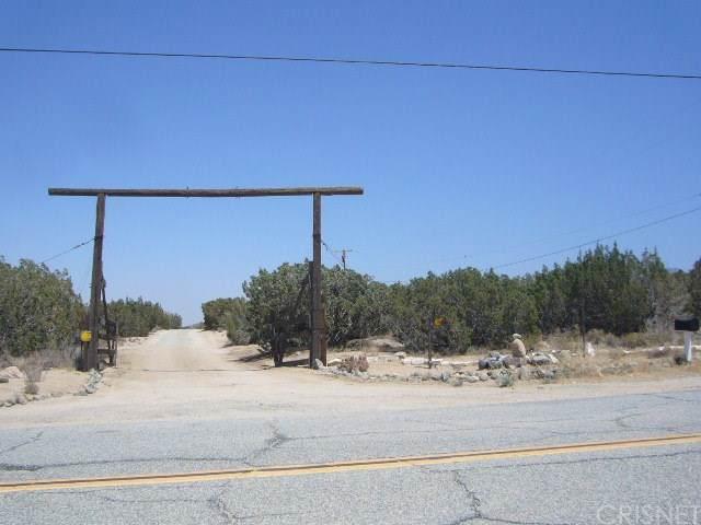 30930 96th Street E, Juniper Hills, CA 93543 (#SR19078043) :: Randy Plaice and Associates
