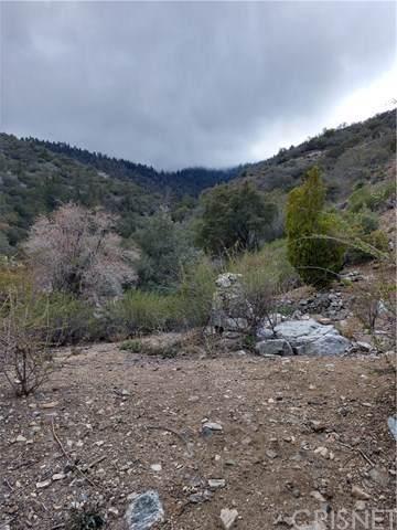 0 Truman Trail - Photo 1