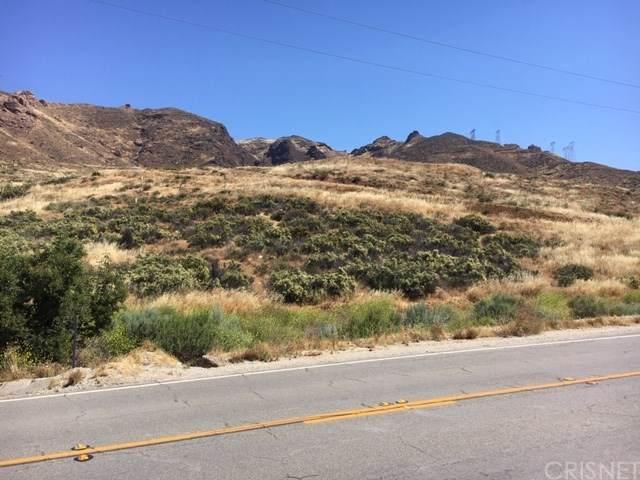 0 Vac/Soledad Canyon Rd/Vic Rave - Photo 1