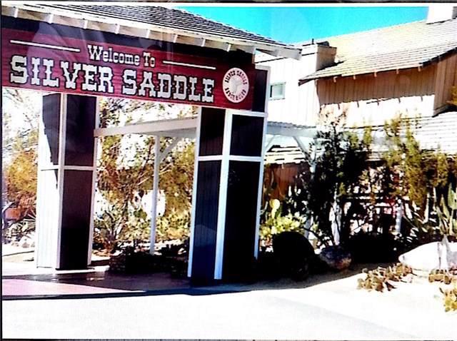 0 Silver Saddle - Photo 1