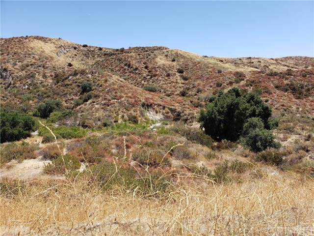 0 Sand Canyon, Canyon Country, CA 91387 (#SR19186682) :: Randy Plaice and Associates