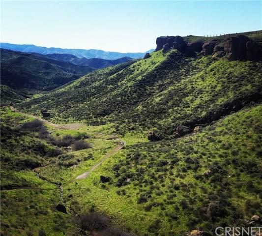 0 Tick Canyon Road - Photo 1