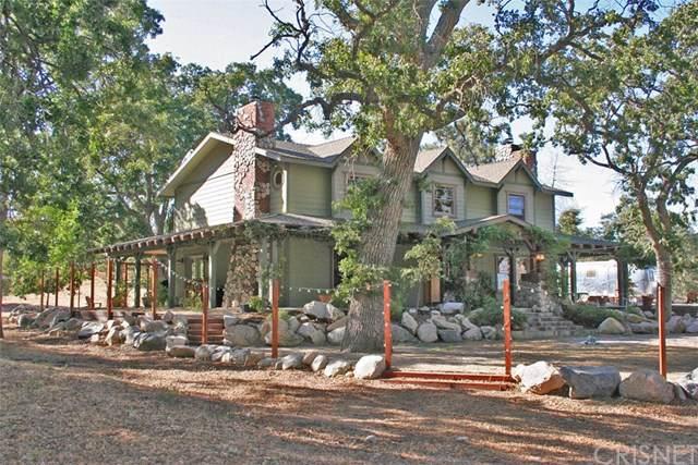28200 Pine Canyon Road, Lake Hughes, CA 93532 (#SR19231012) :: Randy Plaice and Associates