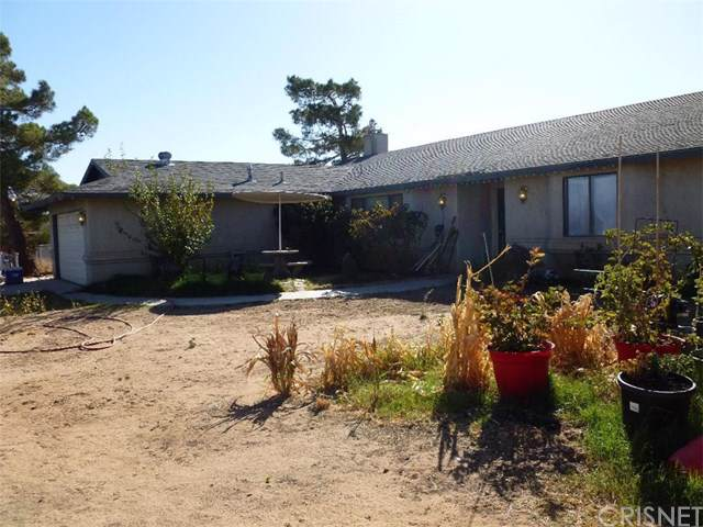 20847 Candelaria Road, Apple Valley, CA 92308 (#SR19256047) :: Randy Plaice and Associates