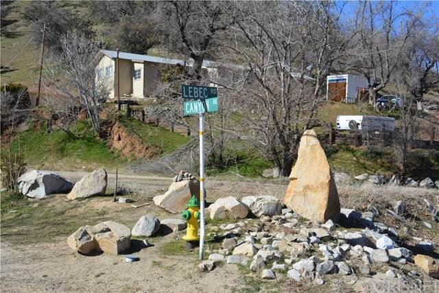 2301 Lebec Road, Lebec, CA 93243 (#SR20029501) :: Randy Plaice and Associates
