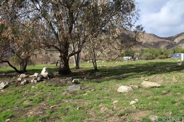 11217 Indian Mesa Drive, Kagel Canyon, CA 91342 (#SR20031766) :: Randy Plaice and Associates