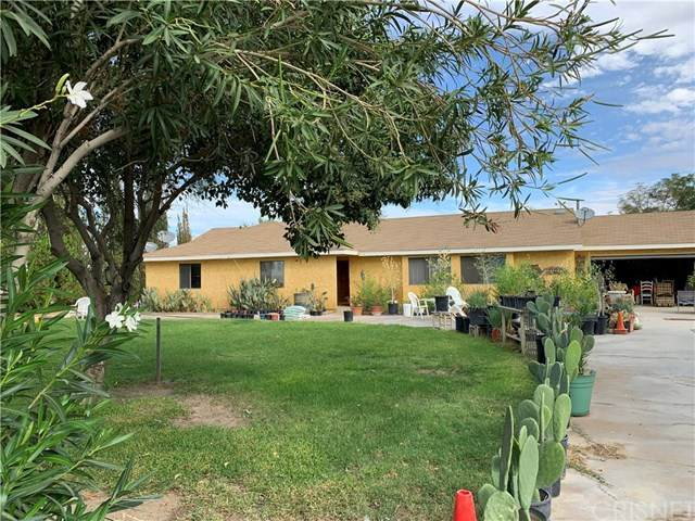 16507 E Avenue T4, Llano, CA 93544 (#SR20045740) :: Randy Plaice and Associates