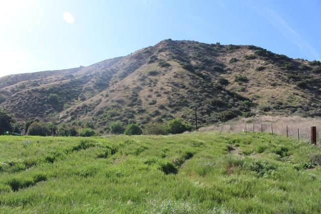 Hopper Canyon Road, Piru, CA 93040 (#V0-220002495) :: TruLine Realty