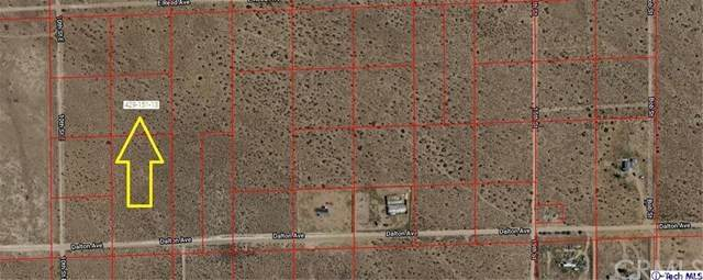 0 10th St East, Mojave, CA 93501 (#320001123) :: Randy Plaice and Associates