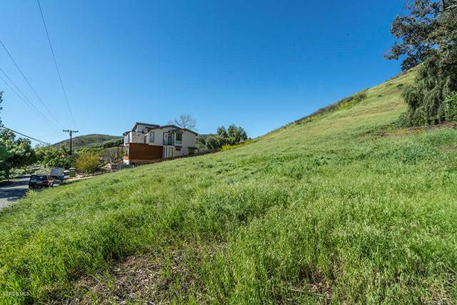 28425 Foothill Drive, Agoura Hills, CA 91301 (#220003449) :: TruLine Realty