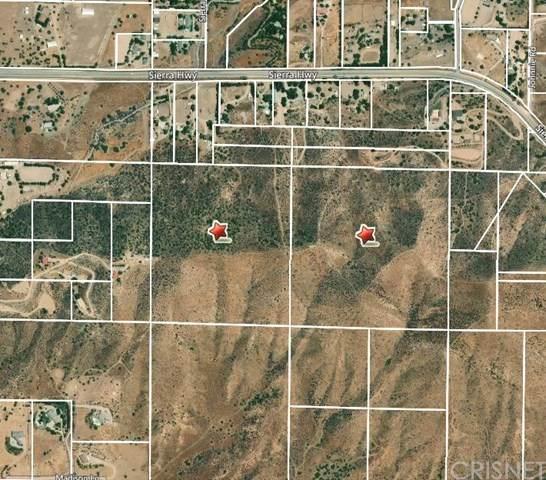 0 Vac/Vic Hugo Ln/Tuthill Lane, Agua Dulce, CA 91350 (#SR20067874) :: Randy Plaice and Associates