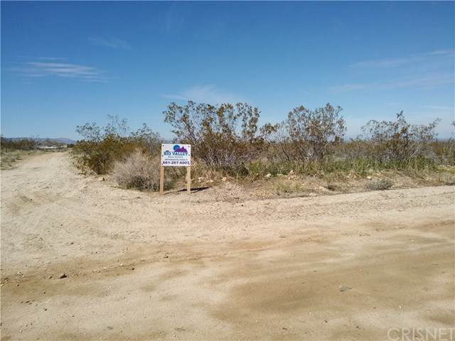 0 175th St E & Ave W14, Llano, CA 93591 (#SR20071251) :: HomeBased Realty