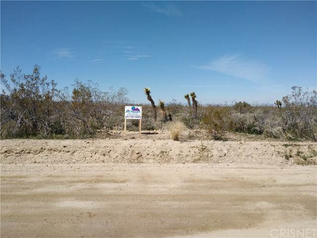 0 175th St E Nr Ave W14, Llano, CA 93591 (#SR20071256) :: HomeBased Realty