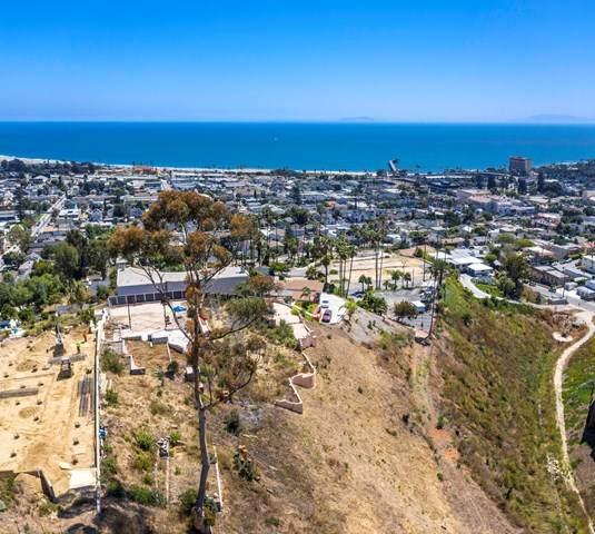 1029 Pacific View Lane - Photo 1