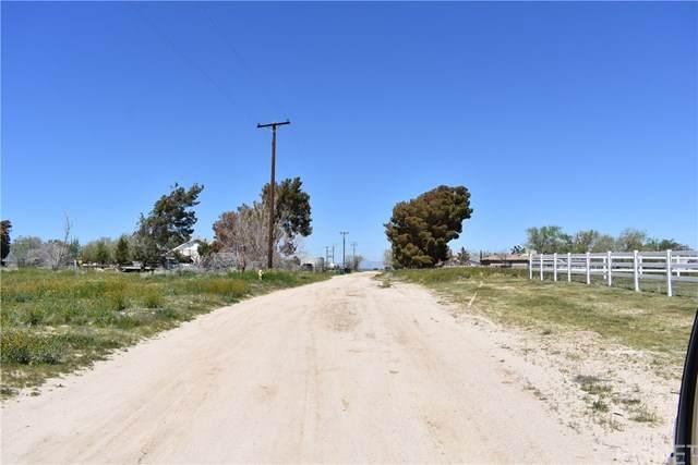 48259 91st St West, Antelope Acres, CA 93536 (#SR20074082) :: HomeBased Realty