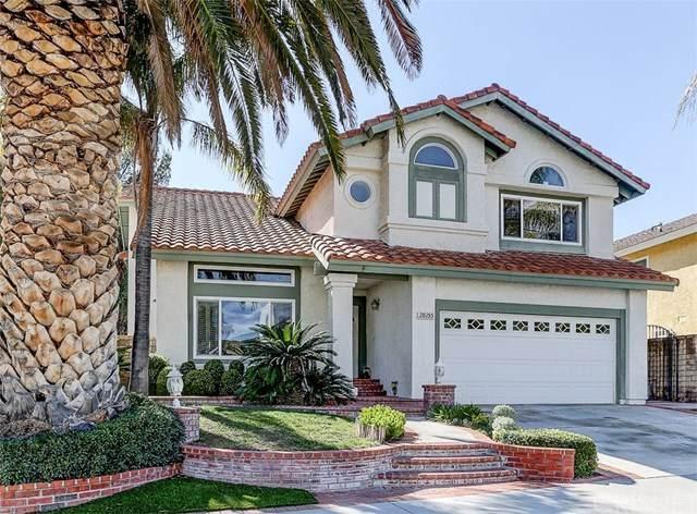 28155 Caraway Lane, Saugus, CA 91350 (#SR20066390) :: Randy Plaice and Associates