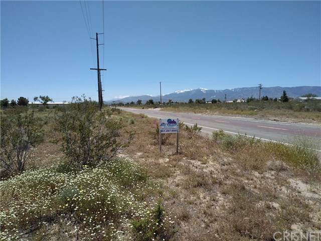 13725 Johnson Road, Phelan, CA 92371 (#SR20086546) :: Compass