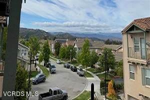 11194 Snapdragon Street Street, Ventura, CA 93004 (#220005453) :: Randy Plaice and Associates